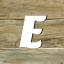 Fachbegriffe mit E