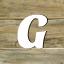 Fachbegriffe mit G