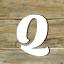 Fachbegriffe mit Q