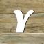 Fachbegriffe mit Y